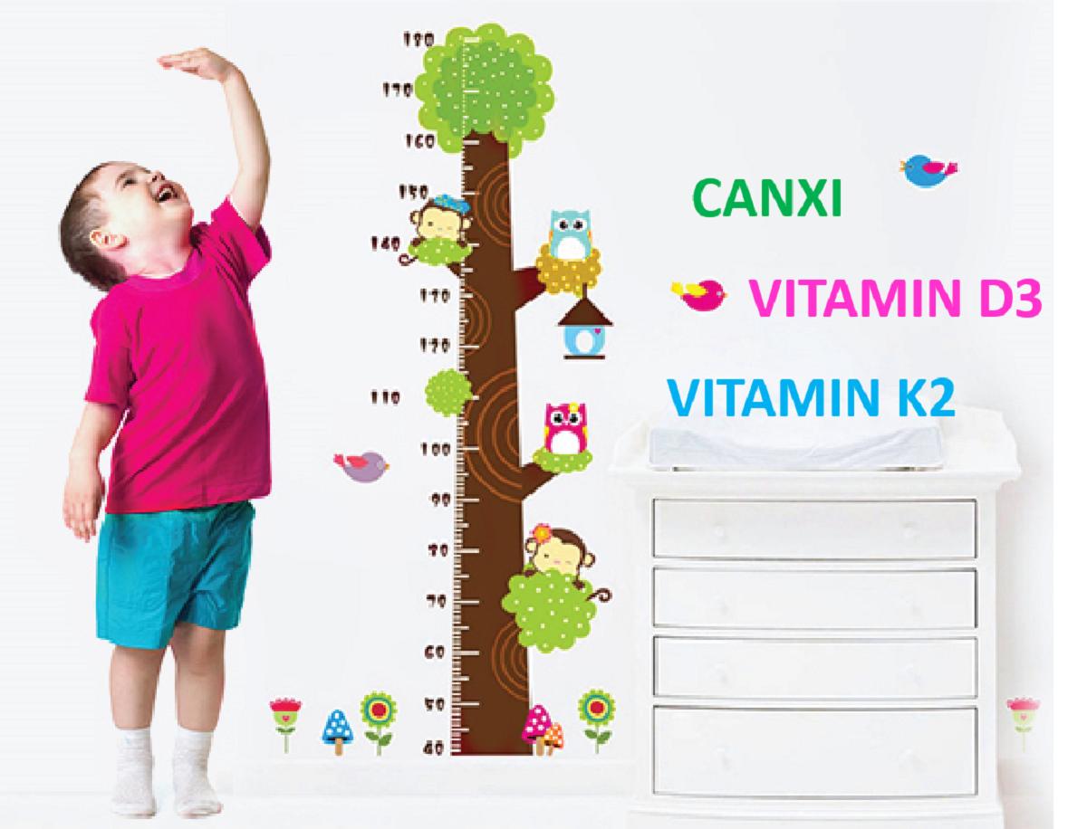 canxi, vitamin D3 và vitamin k2 là 3 nguyên tố quan trọng nhất để có bộ xương chắc khỏe