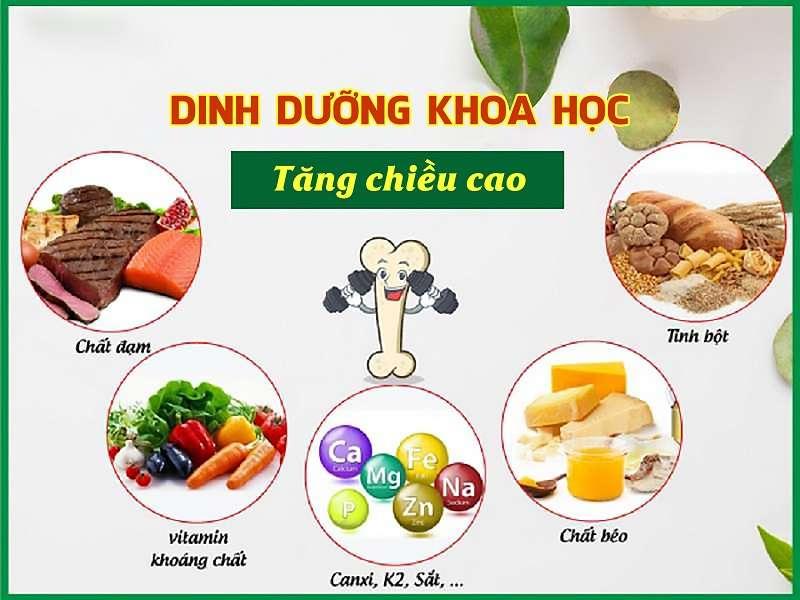 Dinh dưỡng đóng vai trò quan trọng trong phát triển chiều cao ở trẻ