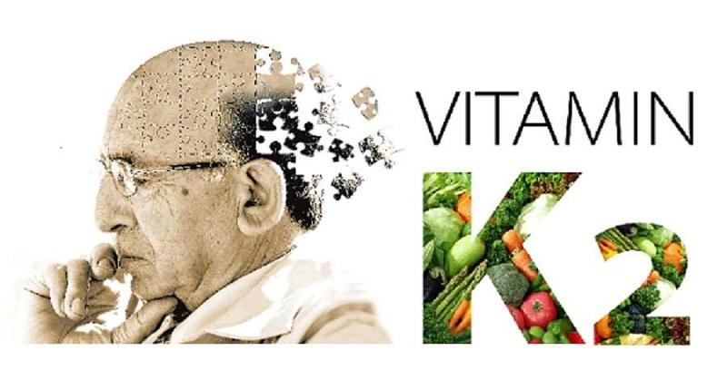 vitamin K2 thấp bị rối loạn canxi trong não và gây nên những ảnh hưởng nhất định đến não của họ, bao gồm cả bệnh Alzheimer