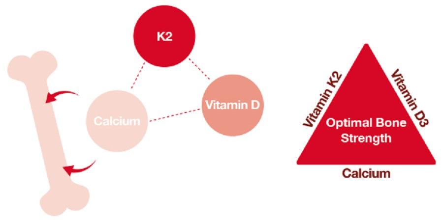bộ ba vi chất vàng của chế độ dinh dưỡng trong phát triển chiều cao của trẻ