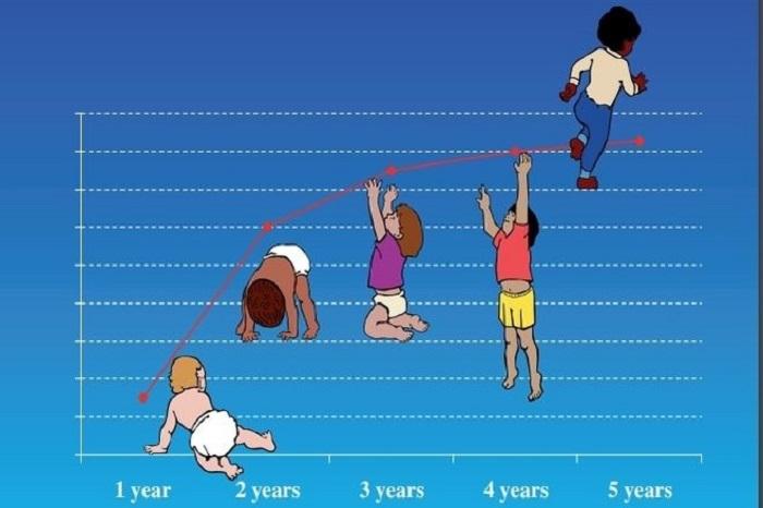 Trong độ tuổi này tốc độ tăng trưởng không quá nhanh khoảng 5,5 cm mỗi năm, mật độ xương cũng tăng lên khoảng 1% một năm ở cả bé trai và bé gái.