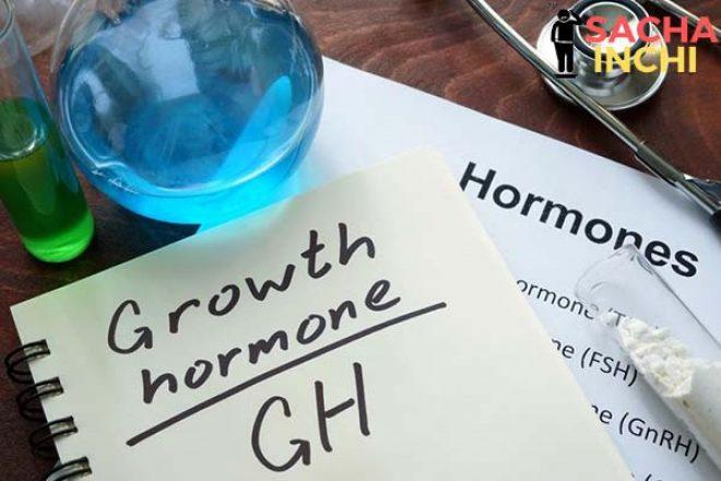 Vận động làm tăng tiết hormone tăng trưởng GH